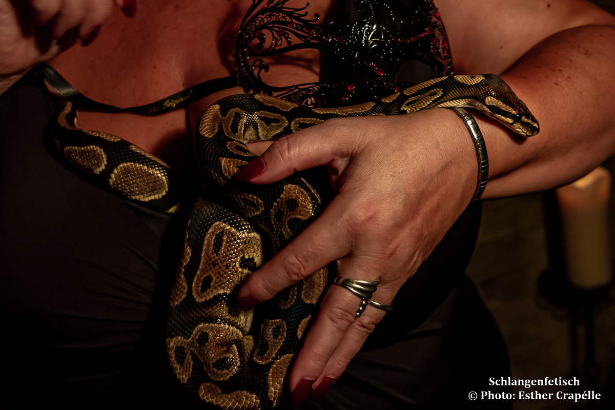 Schlangenfetisch | FetishPoint Magazine
